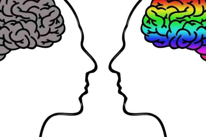estrés y depresión efectos de inflamación del cerebro
