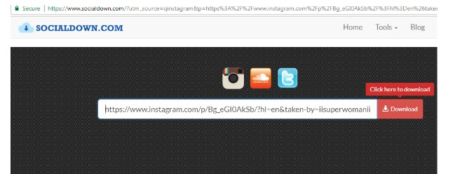 How to Download Instagram Photos, Video, Story and Profile Picture pic 4