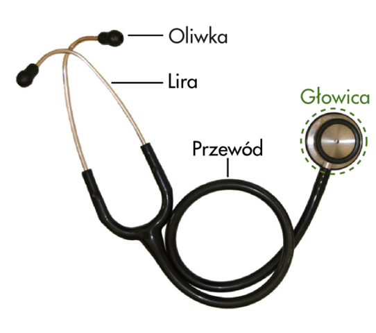 The Best Stethoscope Buying Guide