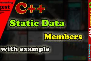 static data member