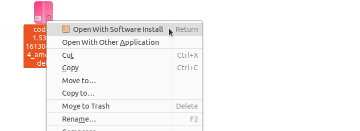 Install VS Code Using Installer in Ubuntu