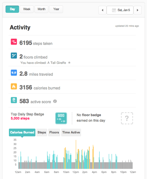 Fitbit dashboard activity