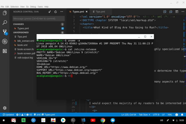 Linux Apps running on the Google Pixelbook