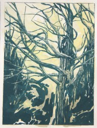 """Abel Tasman 1"", 2014, gouache & lithography on paper, 8 x 6"""