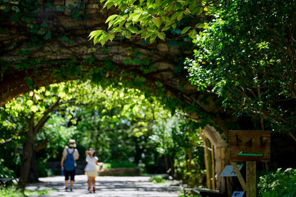 須磨離宮公園の東側植物園前の様子。8月末の快晴の中、草木でできたトンネルを親子が遠くへ歩いて行く写真。