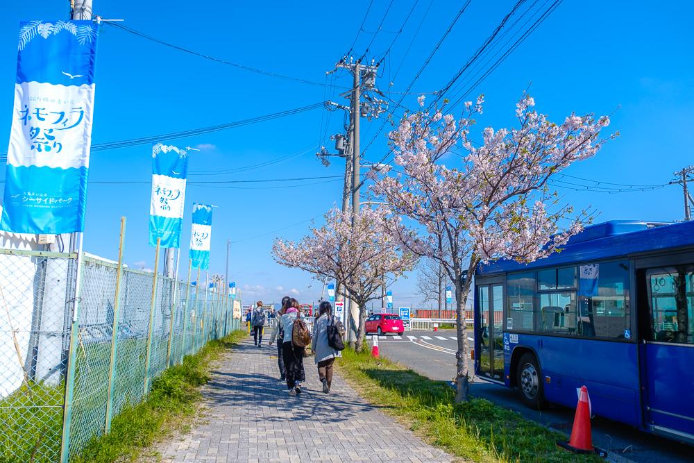 大阪まいしまシーサイドパーク前のバス停から歩いている所