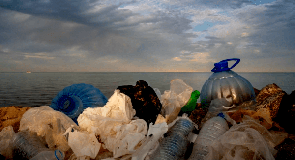 Microplastics Research Project