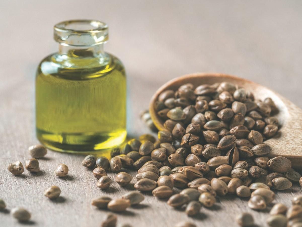 Hemp seeds and hemp oil, copy space