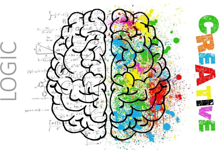 Logique cerveau