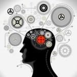 Waar komen onze cognitieve fouten vandaan?