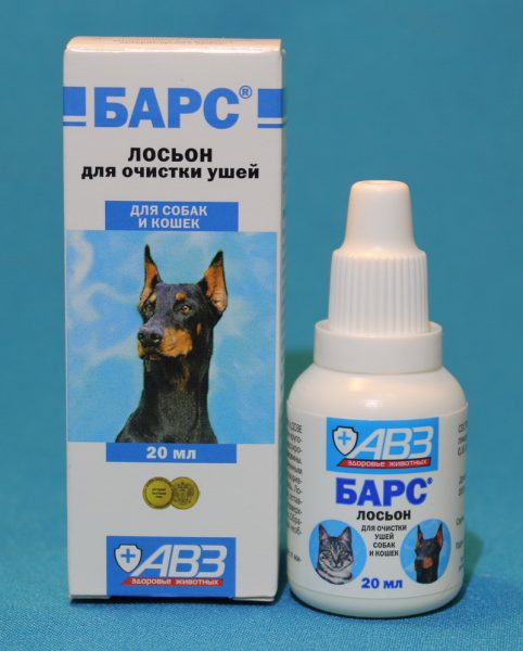 Tools for cleaning the ears of the ear tick