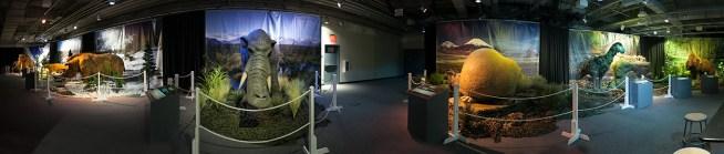 Kokoro Exhibits Ice Age Panoramic