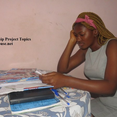 Entrepreneurship Project Topics for Undergraduate and Postgraduates Students in Cameroon.