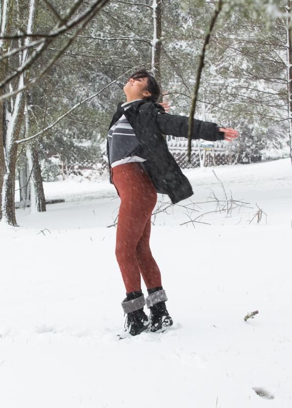 Snow2016FIN-6671