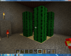 This is my lower level it has a cactus farm and a mine with an ender chest around the corner to the right.