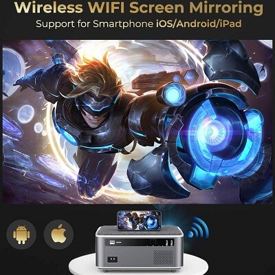 RD828 Wireless WiFi Capable