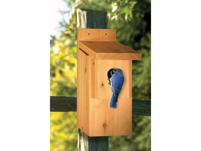 Bluebird House Woodworking Plan 097D 0026   House Plans and More Bluebird house is the perfect place to keep birds visible in your backyard  all year long