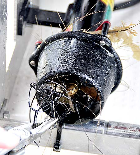clogged thruster of uva in palau