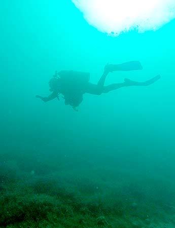 dan obrien scuba diving in palau