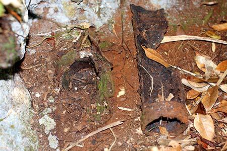 palau island cave vent tubes