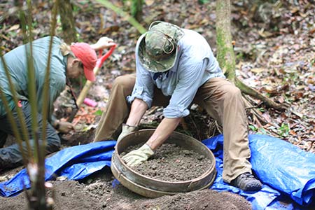 sifting dirt searching in palau