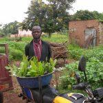 plantation arbre agroforesterie benin