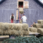Two children and one adult farmer loading hay bales into a barn built in the 1850s