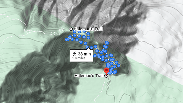 topography and elevation map of the Halemau'u Trail