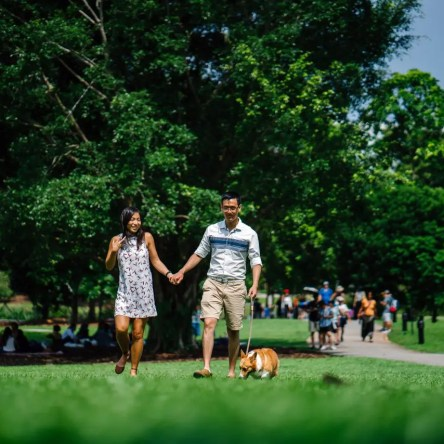 A woman and man hold hands, while walking their dog in a green park