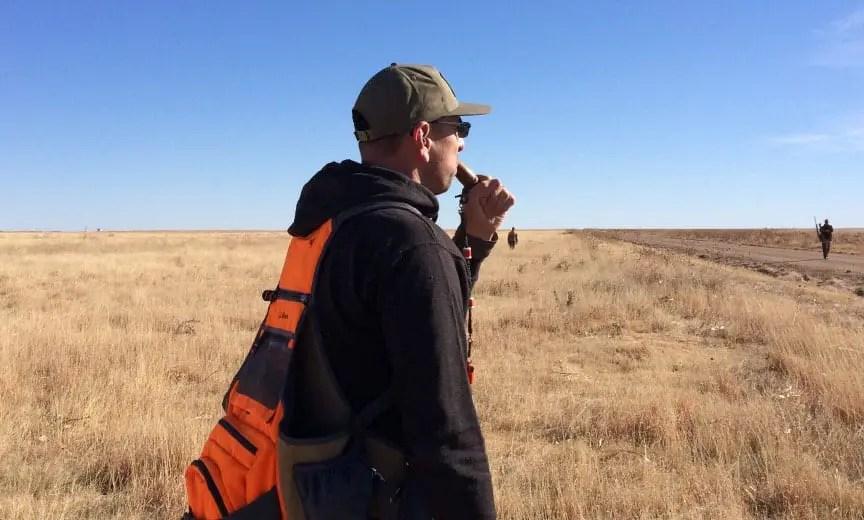 using a pheasant call