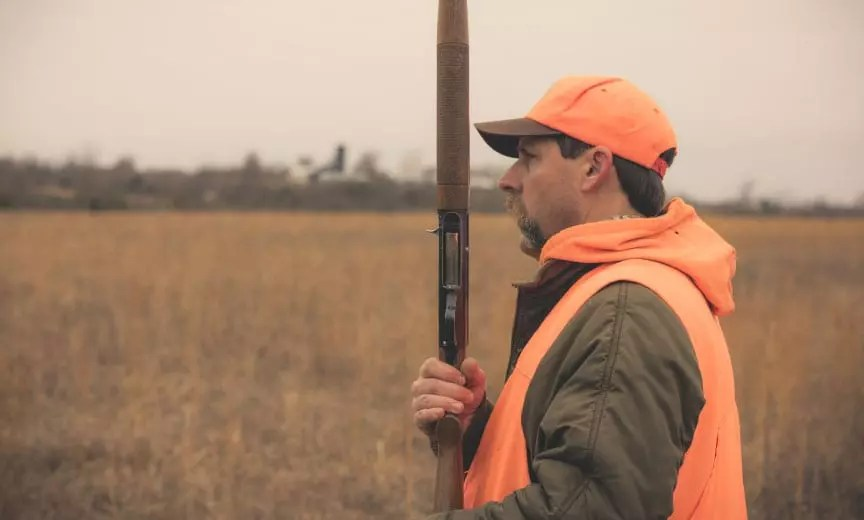 Kyle Hedges hunting bobwhite in a field.