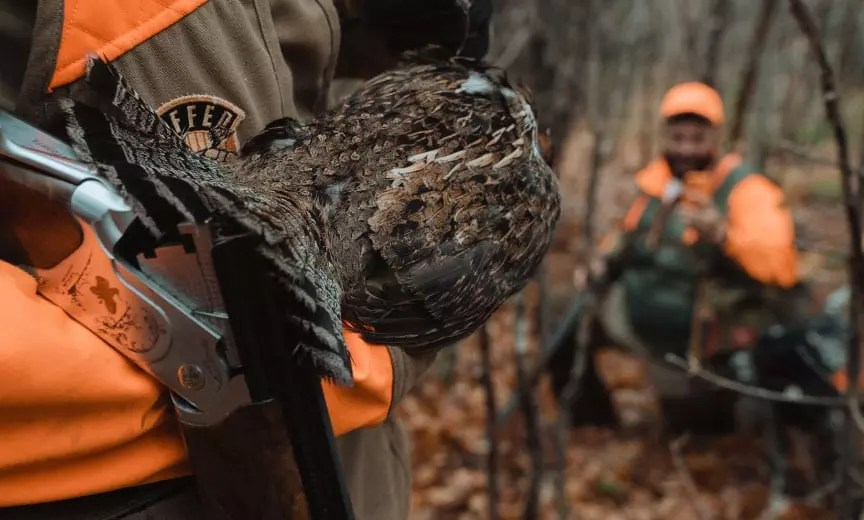 Dr Ben Jones hunting ruffed grouse with a Ruffed Grouse Society staff member.