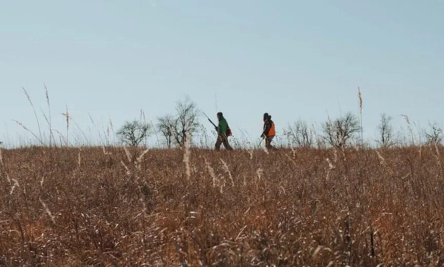 Bird hunters waking on the prairie
