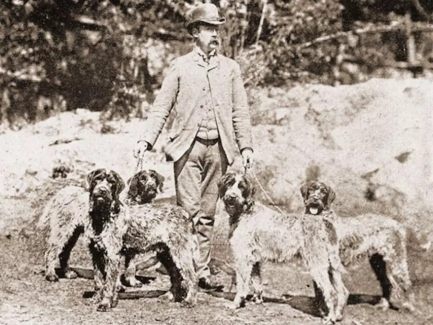 Eduard Karel Korthals the founder of the wirehaired pointing griffon