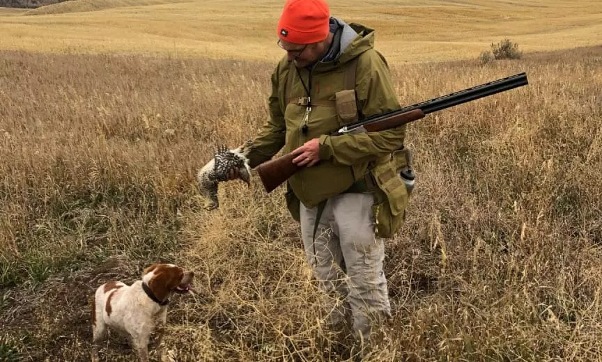 Author Andrew Wayment hunting with a young bird dog.