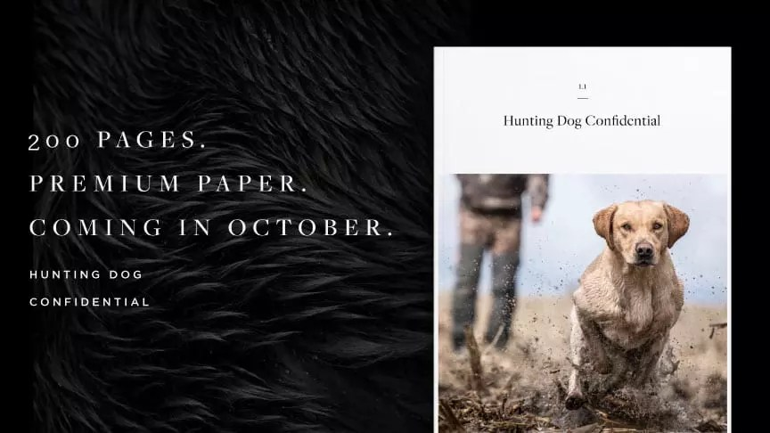 Front cover of issue one of hunting dog confidential magazine.