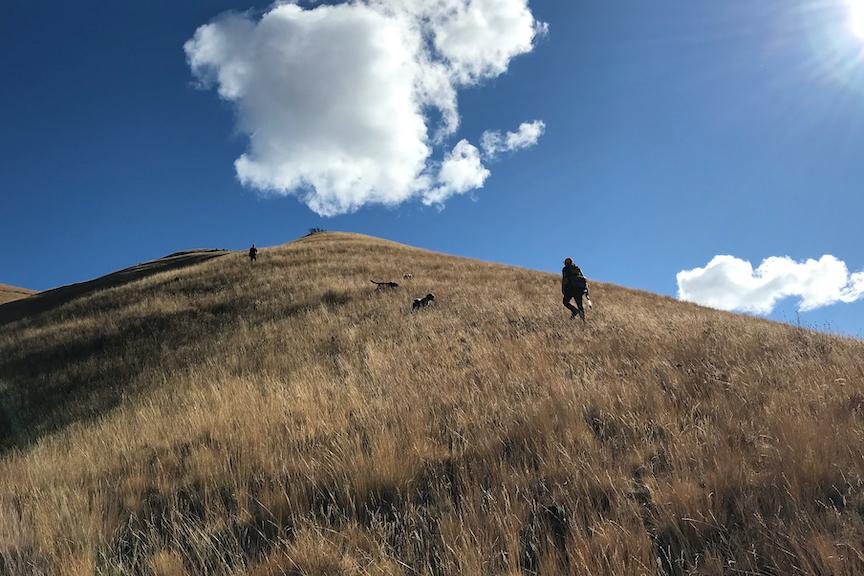 Chukar hunters climb a steep hill in Hells Canyon