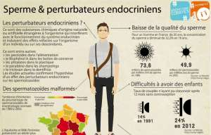 Perturbateurs endocriniens, What the fuck ? 1/2