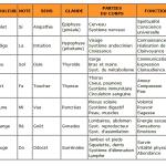 hygiène de vie - Ecologie intérieure & Environnement - La Passerelle