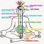 Energie & Chakras - Spiritualité plurielle - La Passerelle