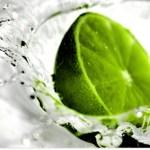 citron acide