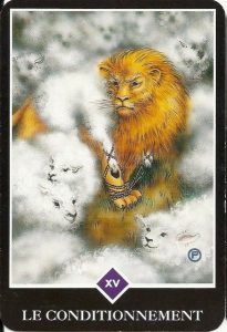 le conditionnement tarot osho