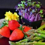 Le printemps dans votre assiette, les 4 saisons
