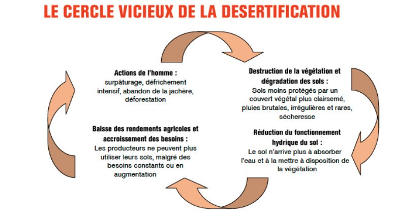 Docu & Infos - Ecologie intérieure & Environnement - La Passerelle