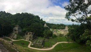 Mexique - Palenque - 116