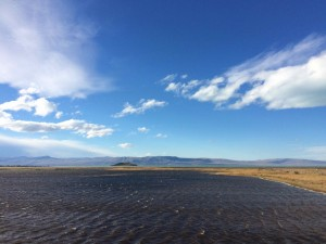 Argentine - El Calafate et Perito Moreno - 034