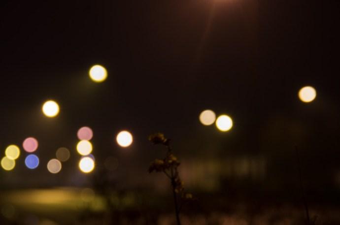 #04/52 - Pois de lumière