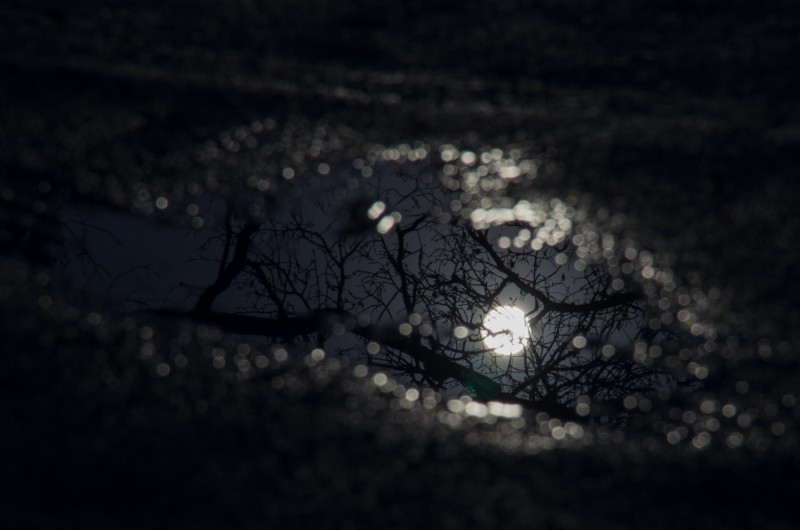 #07/52 - Flaque de Lune