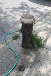 Irrigation à partir de la pompe à incendie