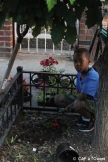 Plantation d'un bégonia par un enfant